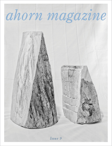 ahorn_cover_issue90